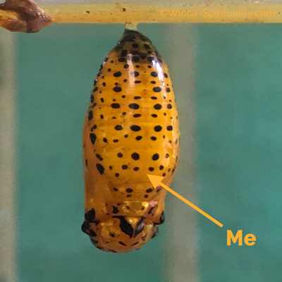 Butterfly Chrysalis: This is me  © Wicca-Spirituality.com