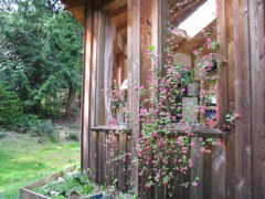 Magical Vacation Home Rental Cabin on Pagan- and Gay-Friendly Denman Island, BC