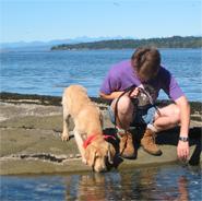 Denman Island BC Beach Puppy
