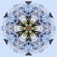 wicca-spirituality Ice Crystals Mandala